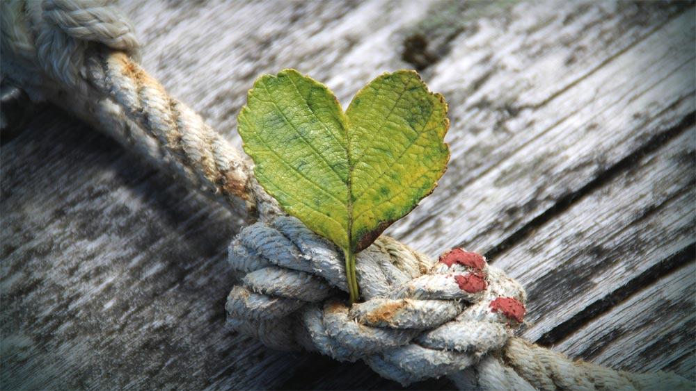 Какво мога да направя, за да имам повече положителни емоции и успех в живота си?